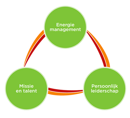Energiemanagement Model Next step coaching